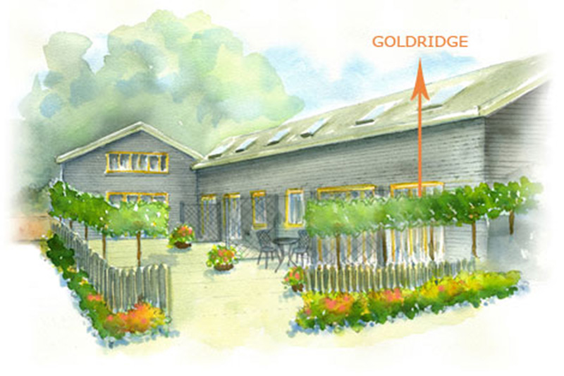 GOLDRIDGE - holiday cottages south downs