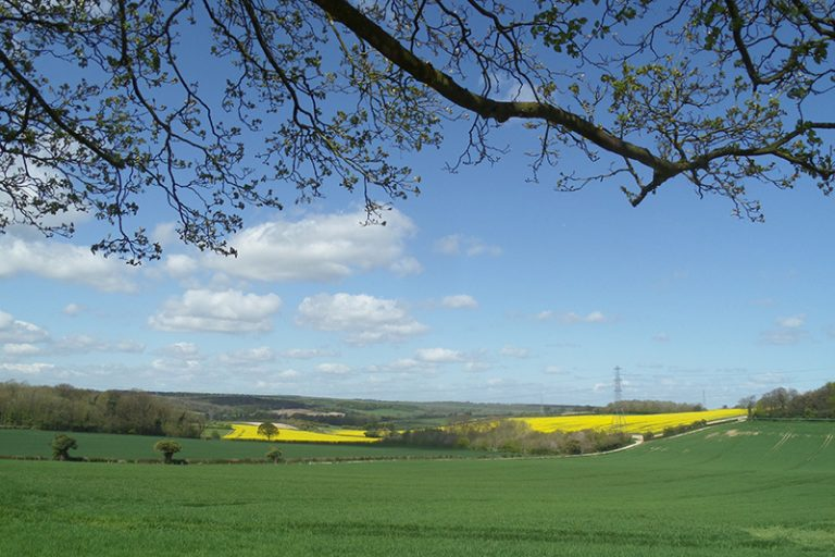 south downs national park accommodation
